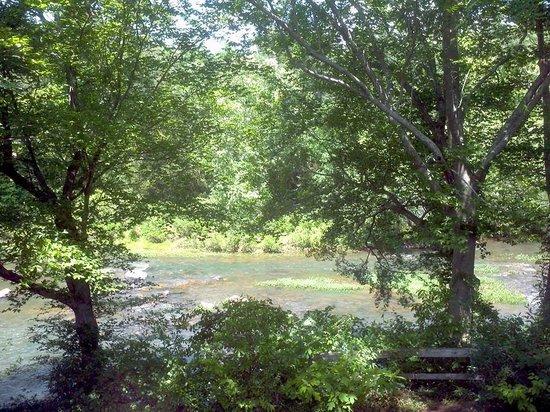 Terrapin Outdoor Center: Terrapin Creek in Cherokee County Alabama