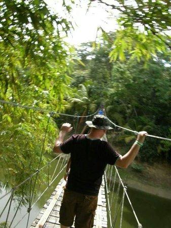 Gumbalimba Park: Hubby leading the way on the rope bridge.