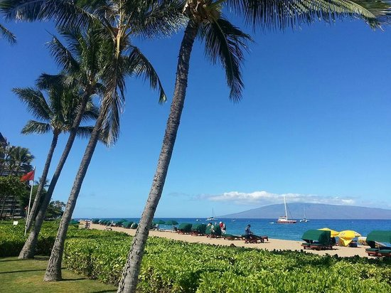 Kaanapali Beach Hotel: The beach again