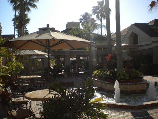 Staybridge Suites Lake Buena Vista: Grounds
