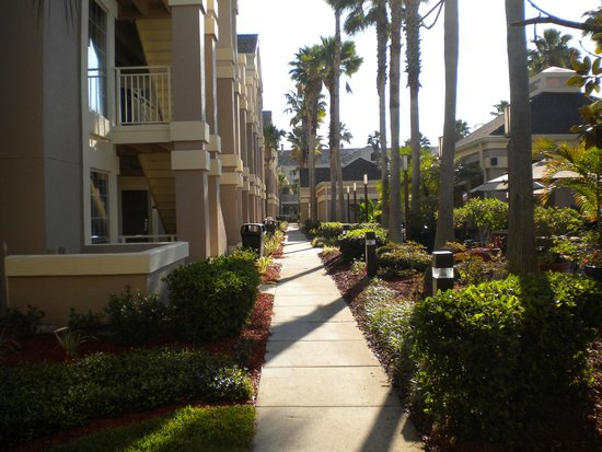 Staybridge Suites Lake Buena Vista: Grounds