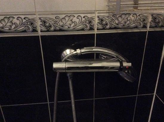 Trinity Hotel : shower head