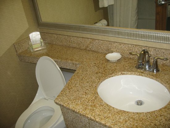 Holiday Inn Downtown Superdome : Bathroom