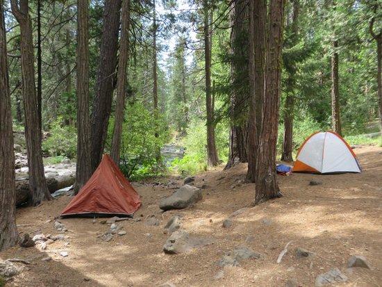Cherry Hill Campground : Campsite 5
