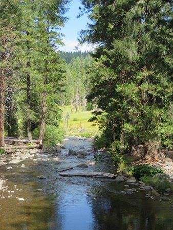 Lassen National Forest, CA: Butte Creek