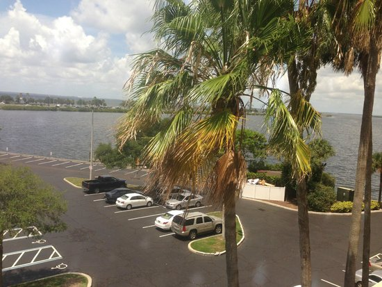 DoubleTree Suites by Hilton Tampa Bay: palm tress & bay view from our room