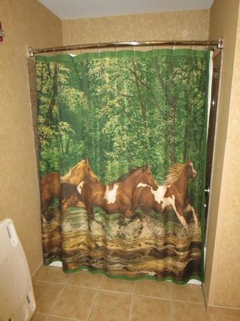 Best Western Plus Kelly Inn & Suites : shower curtain in our room.  how cool is that?