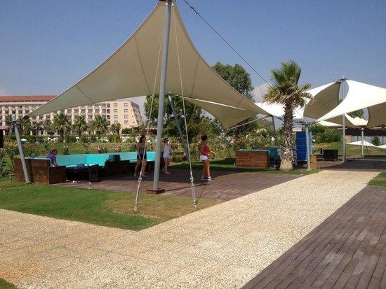Hotel Riu Kaya Palazzo: Dance lesson near VIP bar