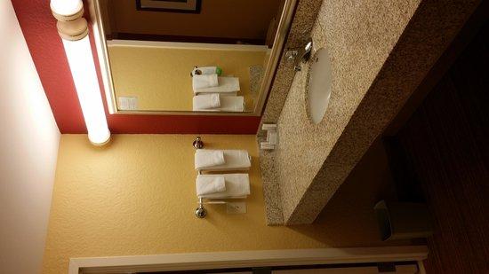 Courtyard Daytona Beach Speedway/Airport: Bathroom sink