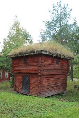 Skansen Open-Air Museum: turf covered building