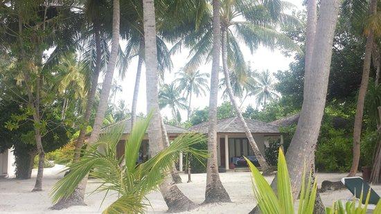 Vilamendhoo Island Resort & Spa: Beach Bungalows
