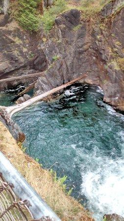 Little Qualicum Falls Provincial Park: Top waterfall