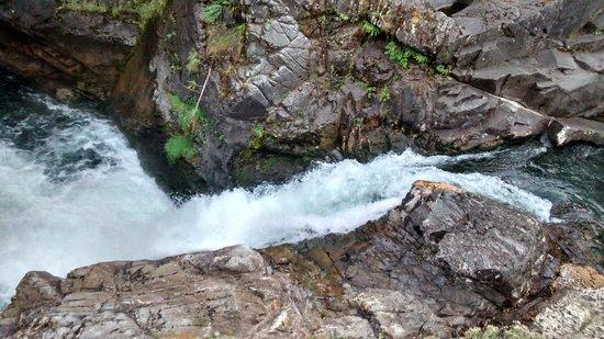 Little Qualicum Falls Provincial Park: side shot