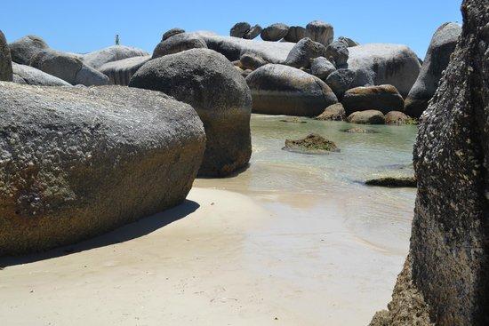 Boulders Beach: Boulders