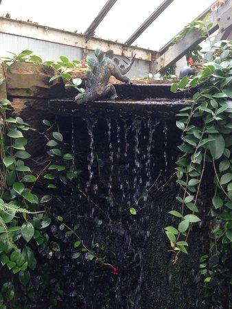 Manor Heath and Jungle Experience: Slightly surreal