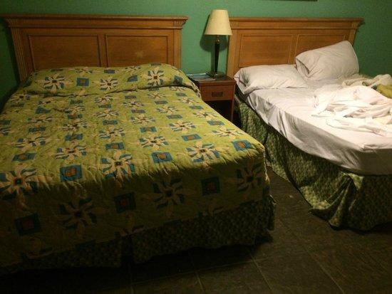 Aquarius Motels: beds