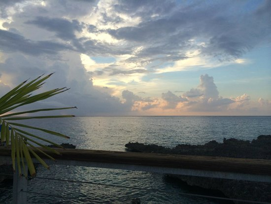 The Cracked Conch by the Sea: Sunset