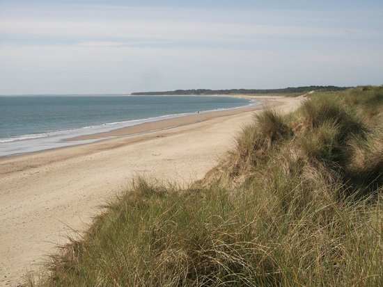 Curracloe Beach: Looking south from Ballinesker