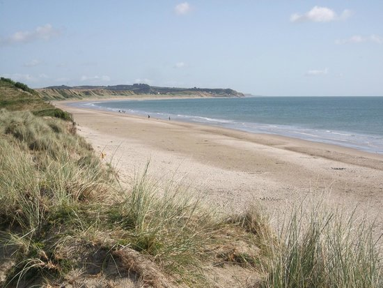 Curracloe Beach: Looking north from Ballinesker