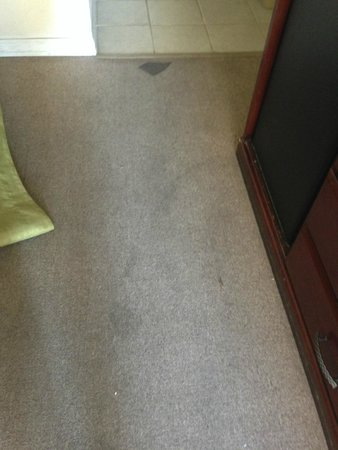 Travelodge Fresno Convention Centre Area: stains all over carpet
