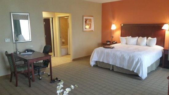 Hampton Inn & Suites Abilene I-20: King suite alt view