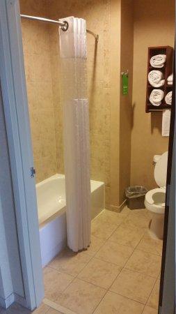 Hampton Inn & Suites Abilene I-20: bath