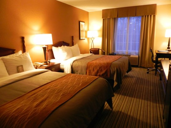 Comfort Inn at the Park: Inside hotel room