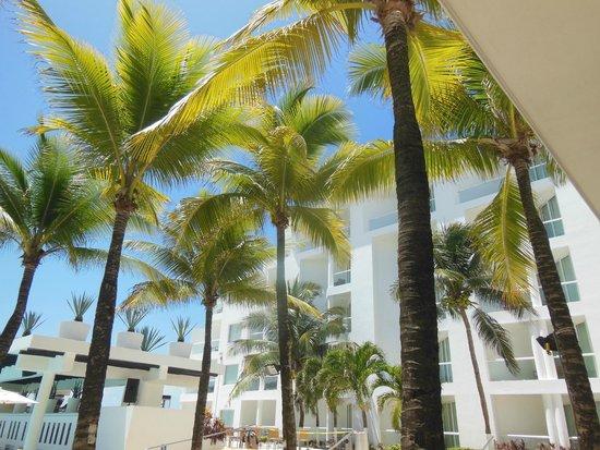 Playacar Palace: area de la alberca y terraza