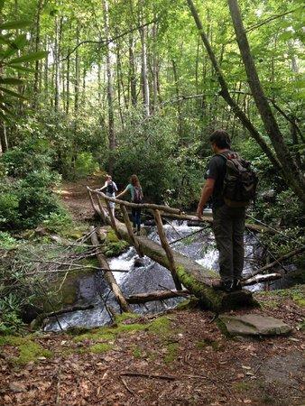Fontana Village Resort: Twenty Mile Trail - GSM National Park