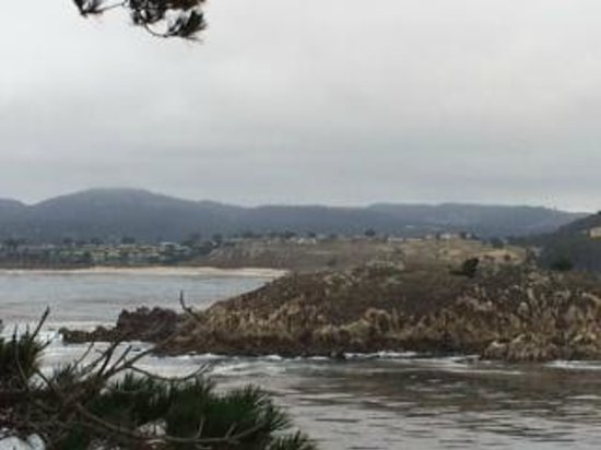 Point Lobos State Reserve: towards carmel