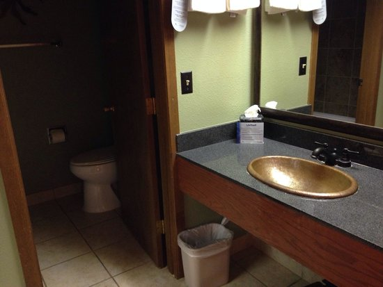 Lake Powell Resort : Toilette