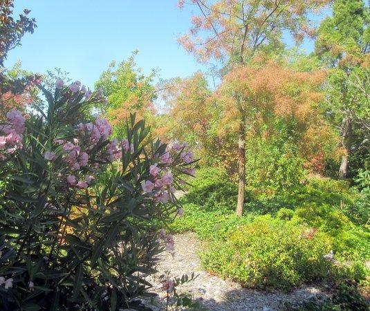 Experimental Garden Area, Baylands Park, Sunnyvale, Ca