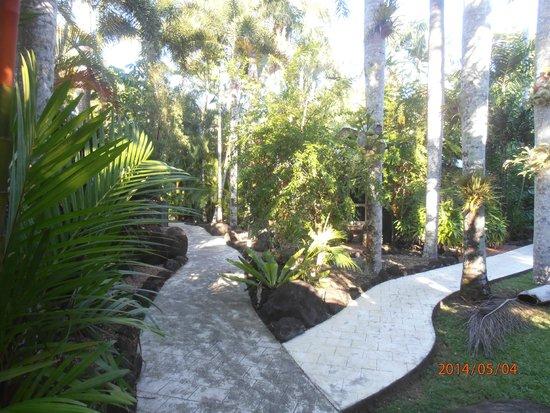Eco Village Resort Mission Beach : pathway through the garden