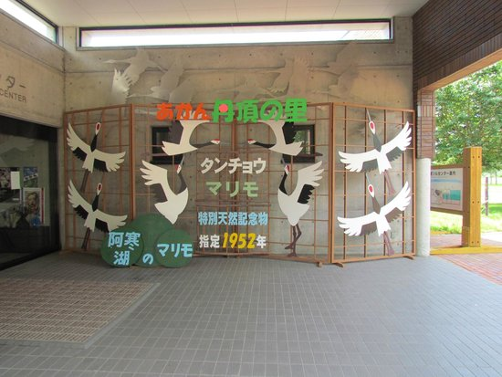 Akan International Crane Centre: entrance to the cran centre