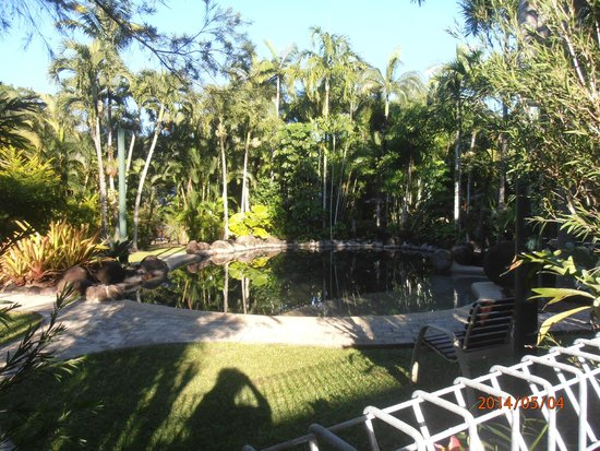 Eco Village Resort Mission Beach : pool