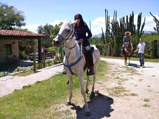 Horseback Mexico: heading back to the ranch after the morning ride