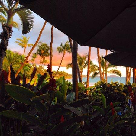 5 Palms Restaurant: Beautiful views!
