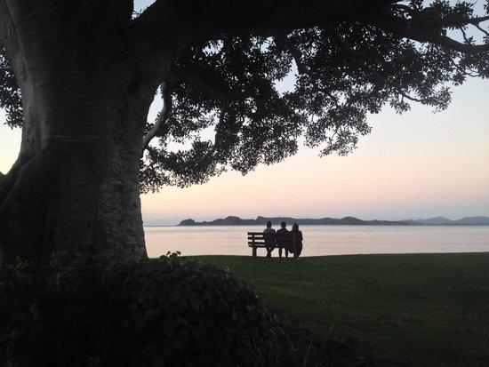 Dolphin Motel: Oneroa Bay