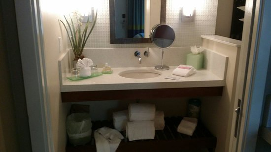 Orchid Key Inn : Sink and vanity area