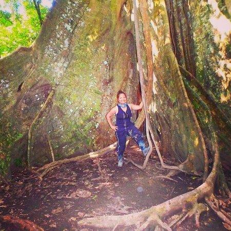 Tambopata Ecolodge: #loveinstajungle