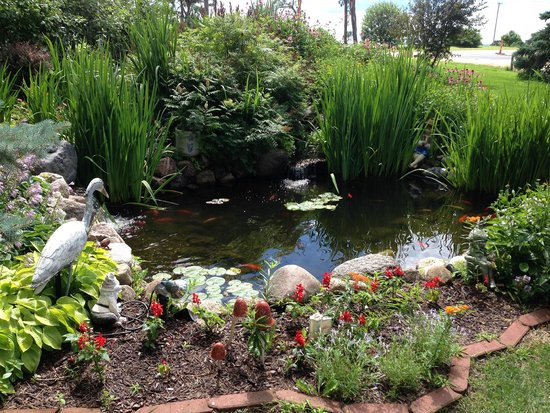 Cloran Mansion Bed & Breakfast: The pond.