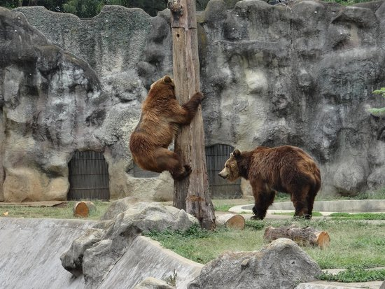 La Aurora Zoo : Take a hike, buddy.