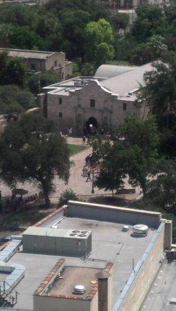 Hyatt Regency San Antonio: View of Alamo from pool
