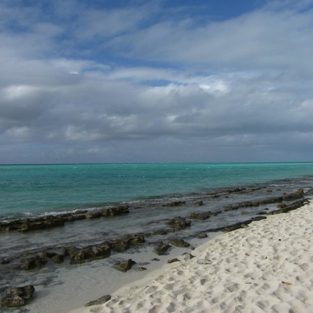 Heron Island Resort: Over looking the reef from the beach in front of the resort!