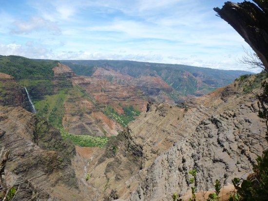 Waimea Canyon: view