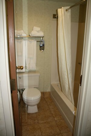Comfort Inn Airport: bathroom