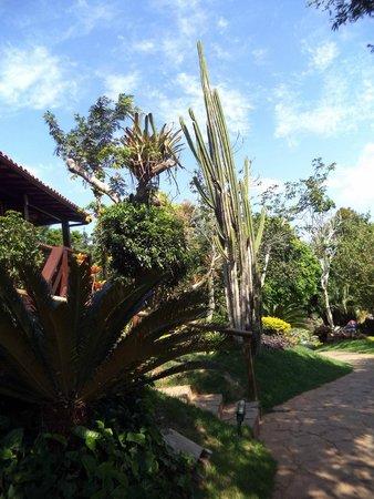 Hotel La Foret: Vistas de chalés