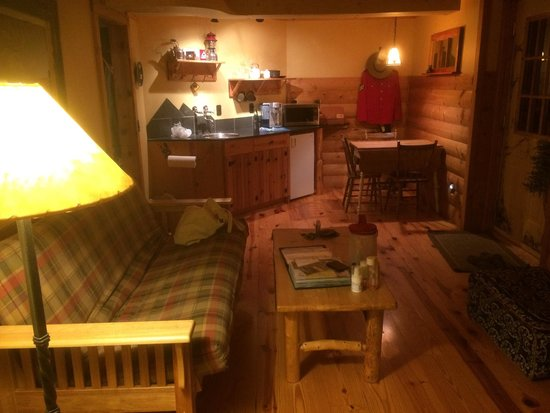 Bear Necessities B&B : Futon and half kitchen