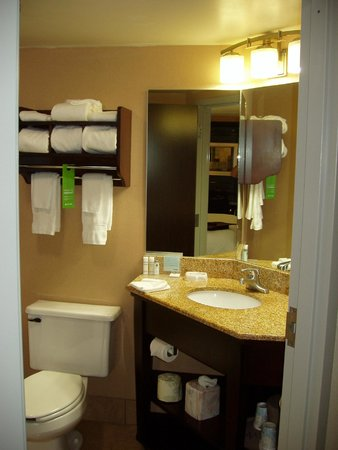 Hampton Inn Columbus West: Bathroom