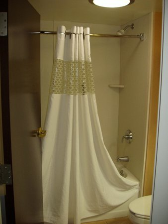 Hampton Inn Columbus West: Shower
